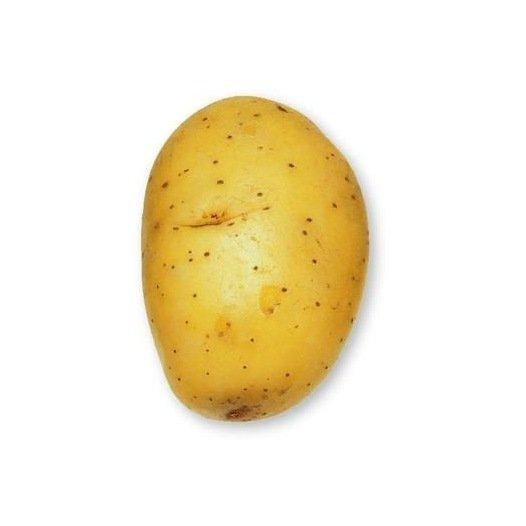 Pomme de terre Agila - 5kg