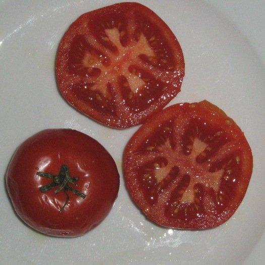 Tomate Potager de Vilvorde