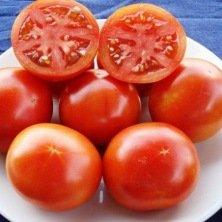 Tomate Burbank