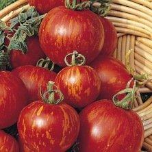 Tomate Tigerella