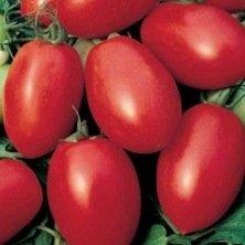 Tomate Olivette rose