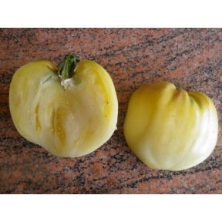 Tomate Coeur de Boeuf Blanche