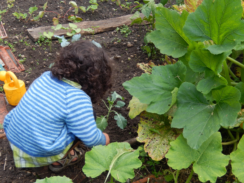 Alice et Emilie au jardin des merveilles