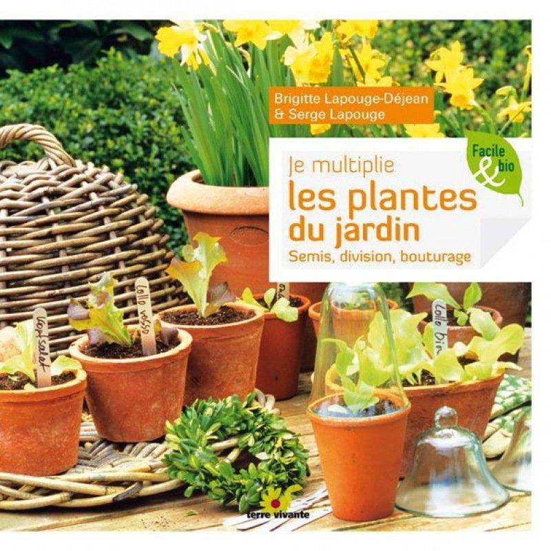 Je multiplie les plantes du jardin for Plantes du jardin