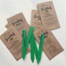 20 petites étiquettes à semis, vertes