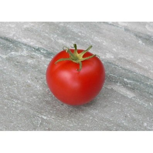 Tomate de couleur Canabec rose