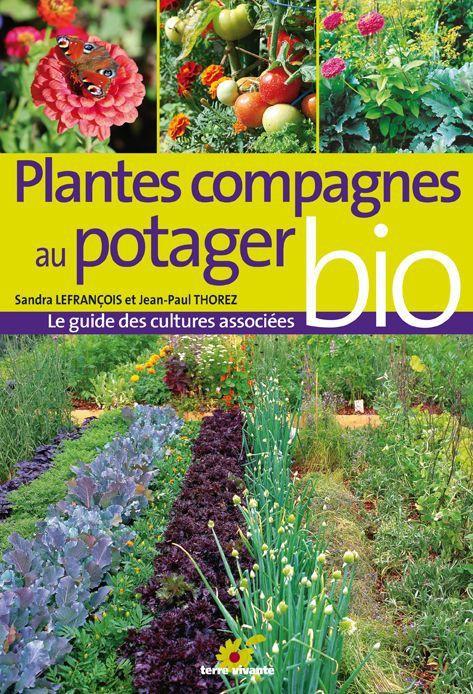 Plantes compagnes au potager bio for Commander des plantes