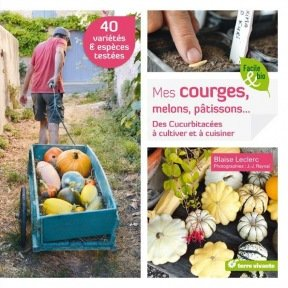 Mes courges, melons, pâtissons...