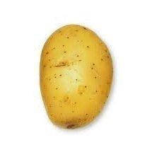 Pomme de terre Agila - 1kg