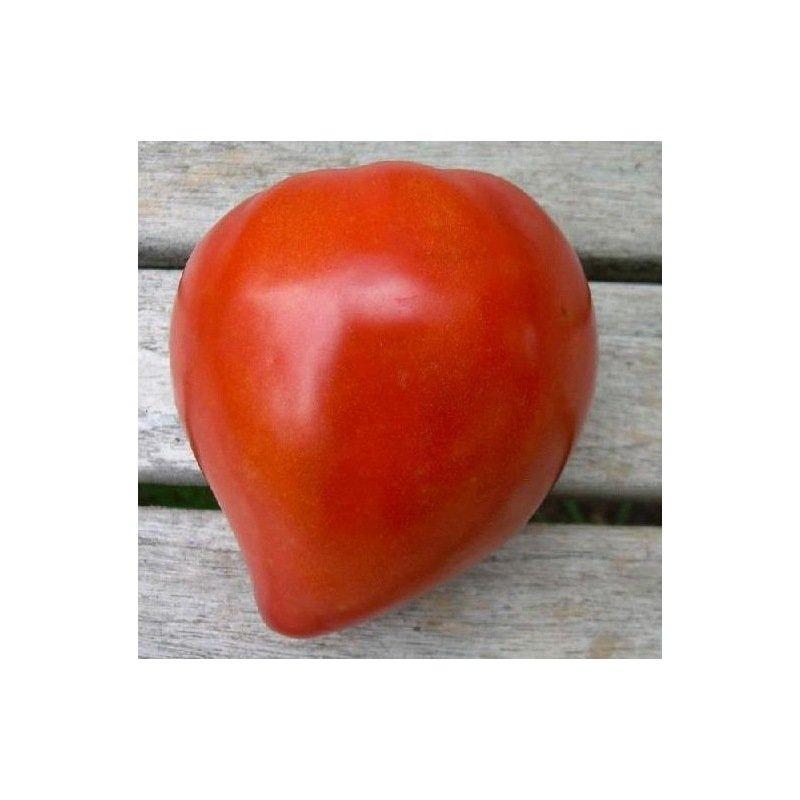 Tomate coeur de boeuf - Cuisiner le coeur de boeuf ...