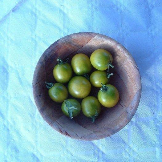 Tomate Raisin Vert