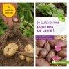 Je cultive mes pommes de terre