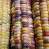 Maïs doux multicolore Inca Rainbow