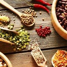 Kit semences : À la découverte des semences paysannes