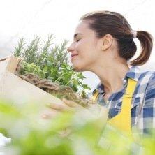 Kit semences : Je jardine au balcon