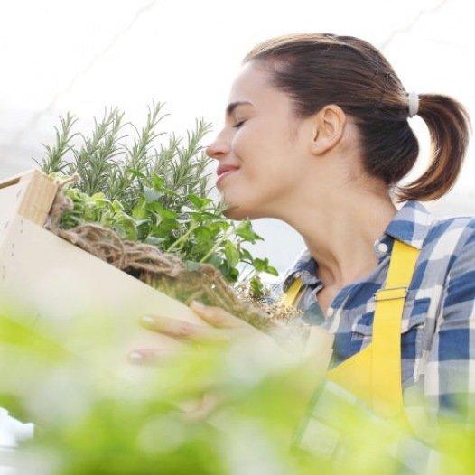Kit cadeau : Je jardine au balcon