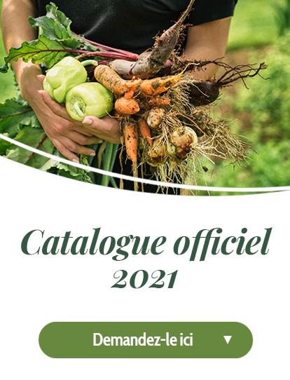 Découvrir le catalogue 2021
